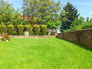 Abbildung eines geräumigen Gartens