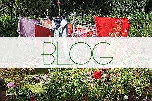 Artikelbild_ Der Waeschesspinne Blog
